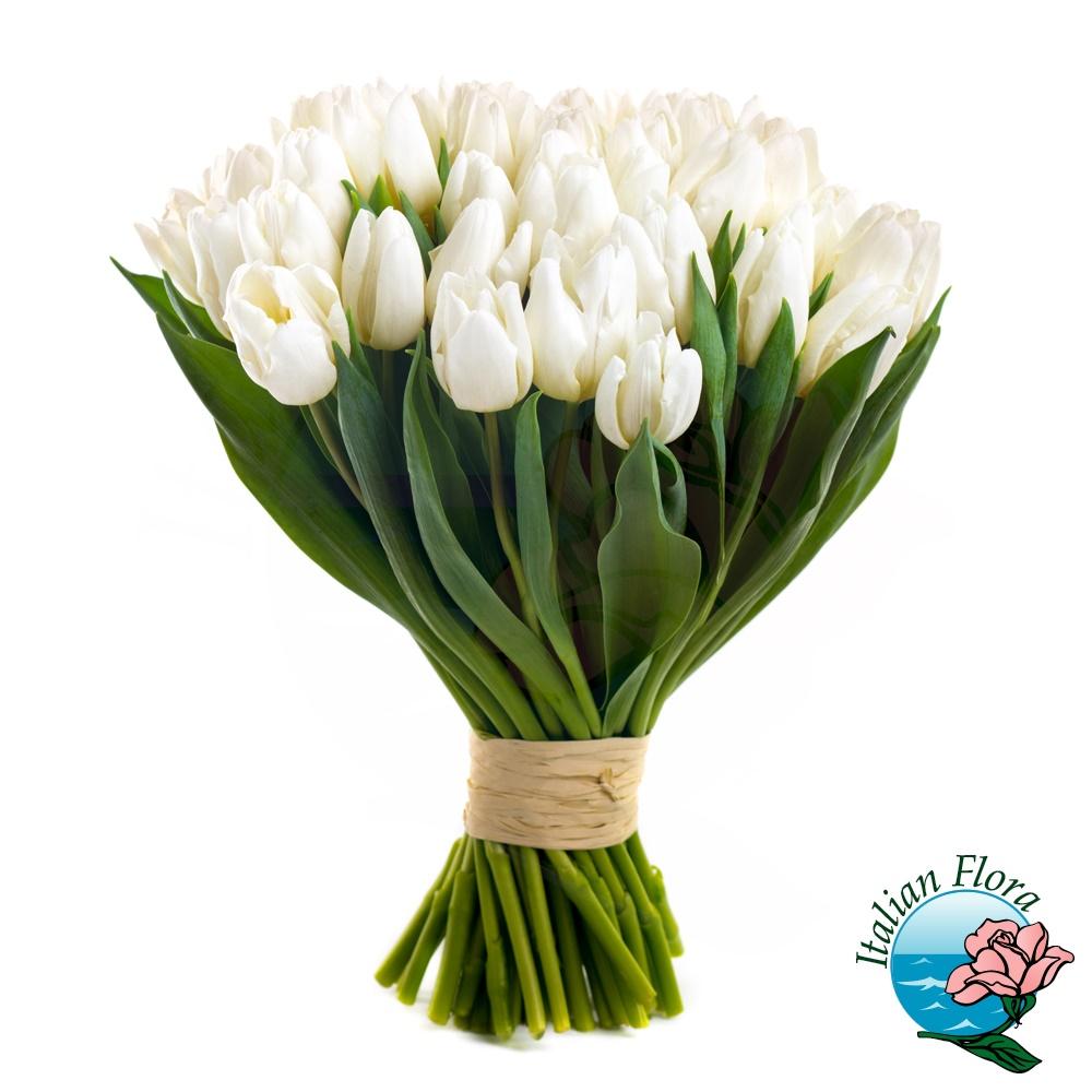Mazzo Di Fiori Tulipani Costo.Mazzo Di Tulipani Bianchi