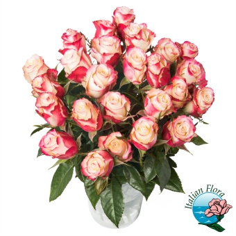 Bouquet di Rose screziate rosse o rosa