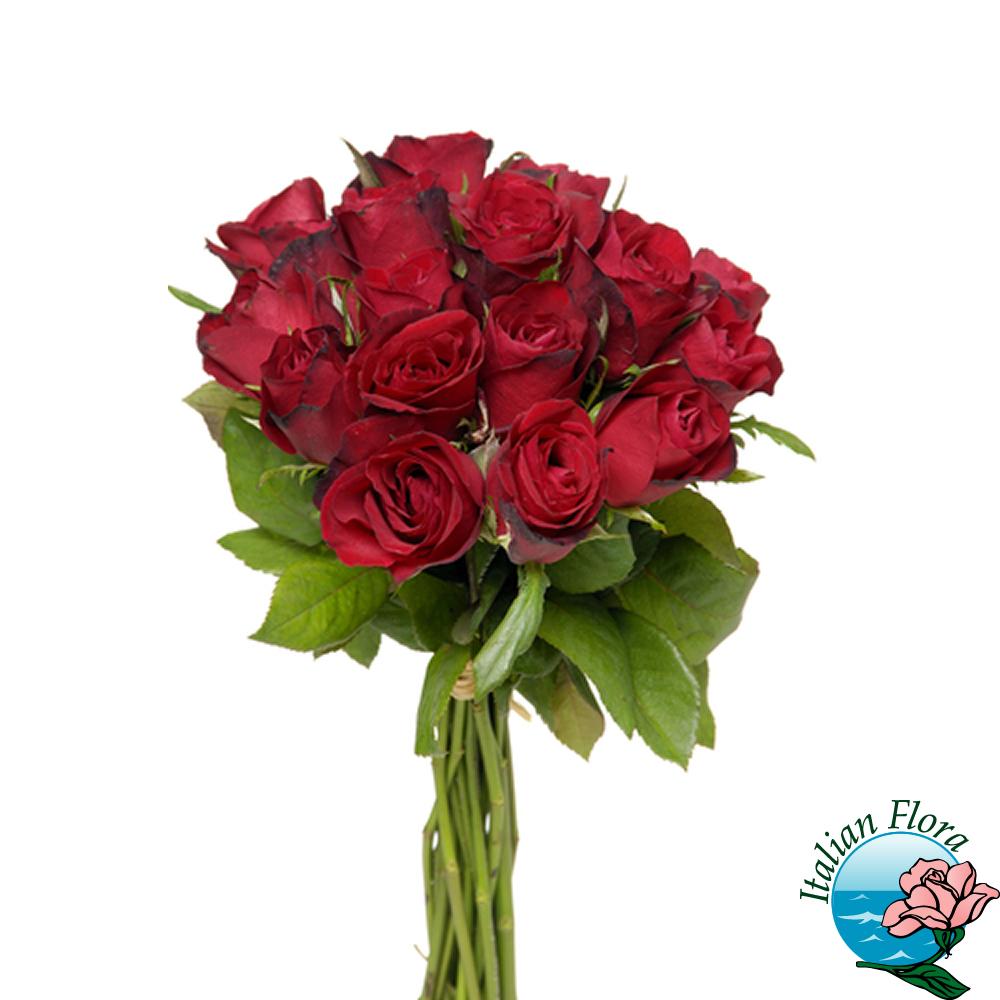 Favorito Mazzo di rose rosse per dire Ti Amo NA02
