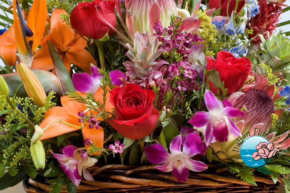 Auguri Matrimonio Spagnolo : Nomi di fiori significato del nome dei