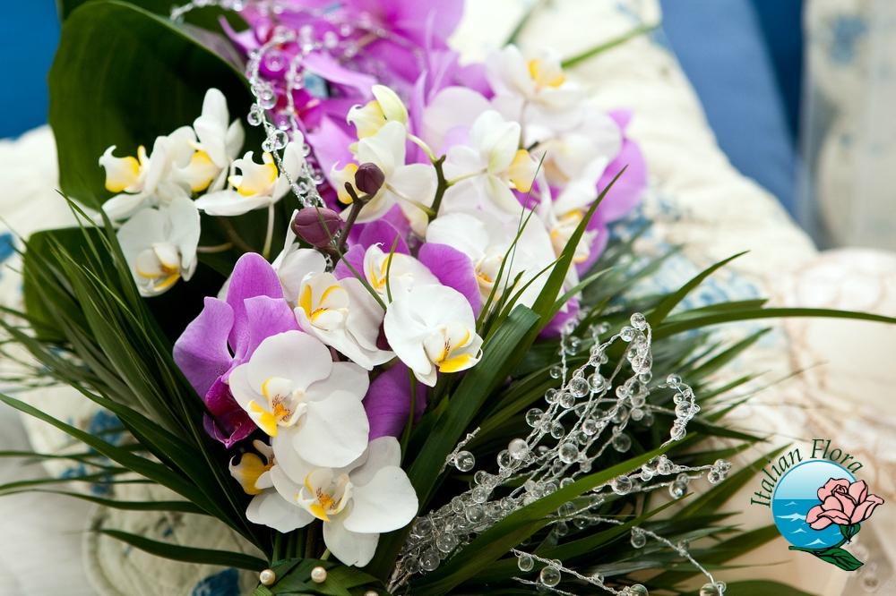 Vendita orchidee online prezzi bassi e consegna a domicilio for Foto di rose bellissime