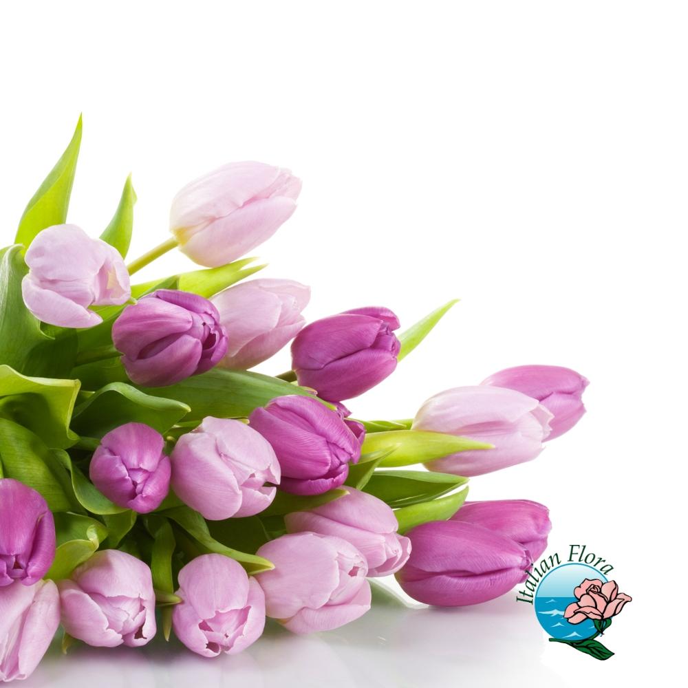 Bouquet E Mazzi Di Tulipani Online Consegna A Domicilio