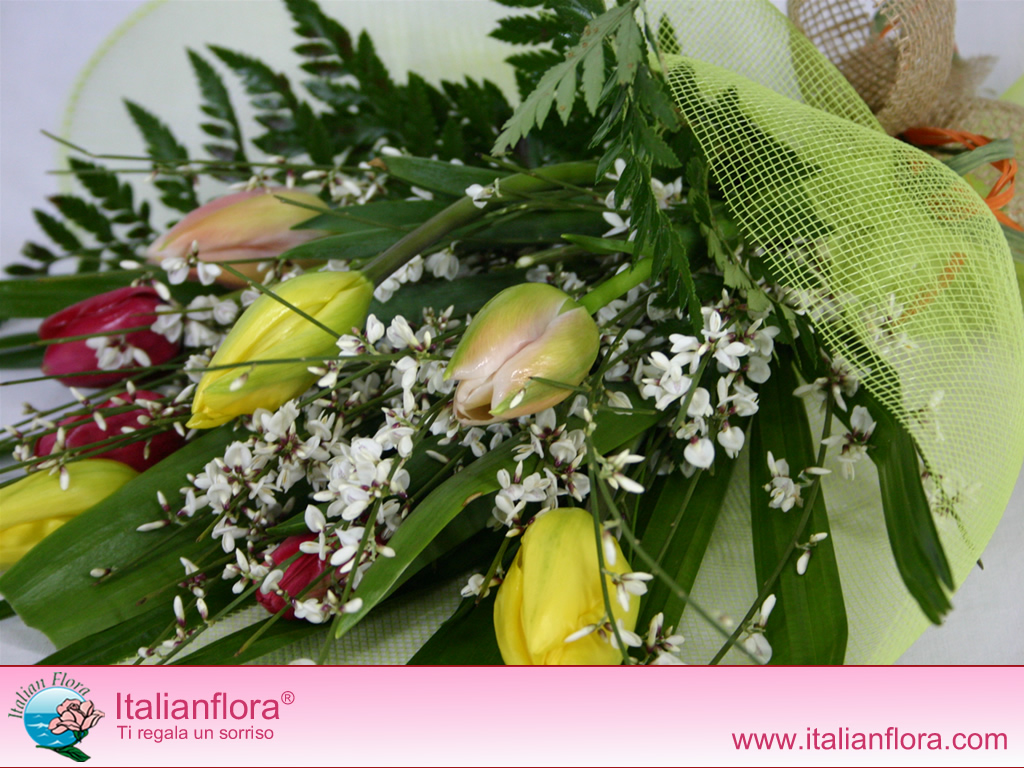 Foto e immagini di fiori su italian flora foto di rose e - Immagini di fiori tedeschi ...